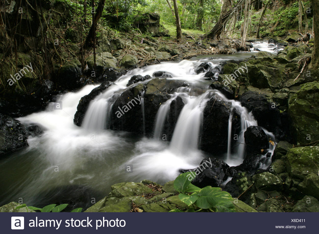 Scenic streams and waterfalls just below Kapena Falls near the Pali Highway,Oahu. Stock Photo