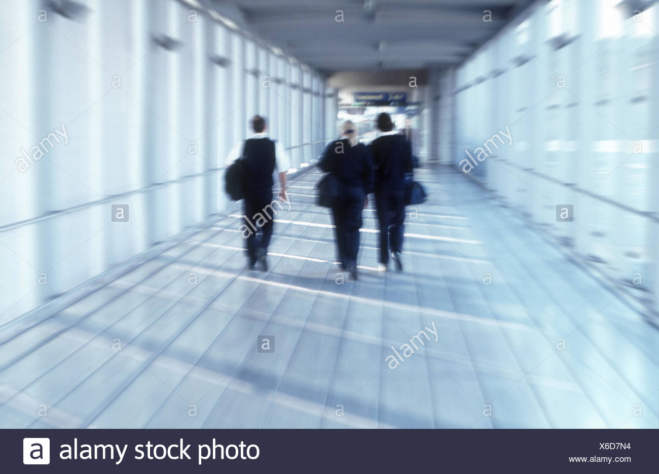 Business premises, walk, colleague, back view, blur, no model release, business, Manager, women, two, man, successfully, purposefully, together, team, Germany, Dusseldorf, airport 'Cologne - stewardesses, crew members, crew, flight attendants, occupation, - Stock Image