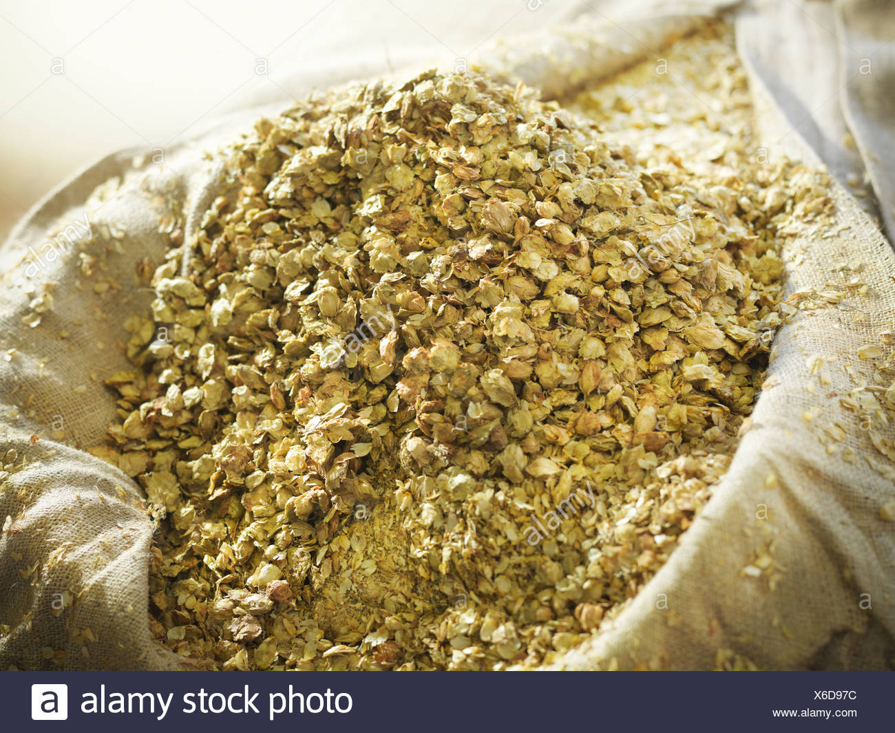 Sack of hops in brewery - Stock Image