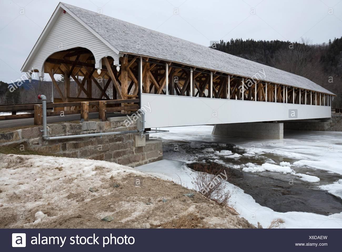 Bridge of Love Review