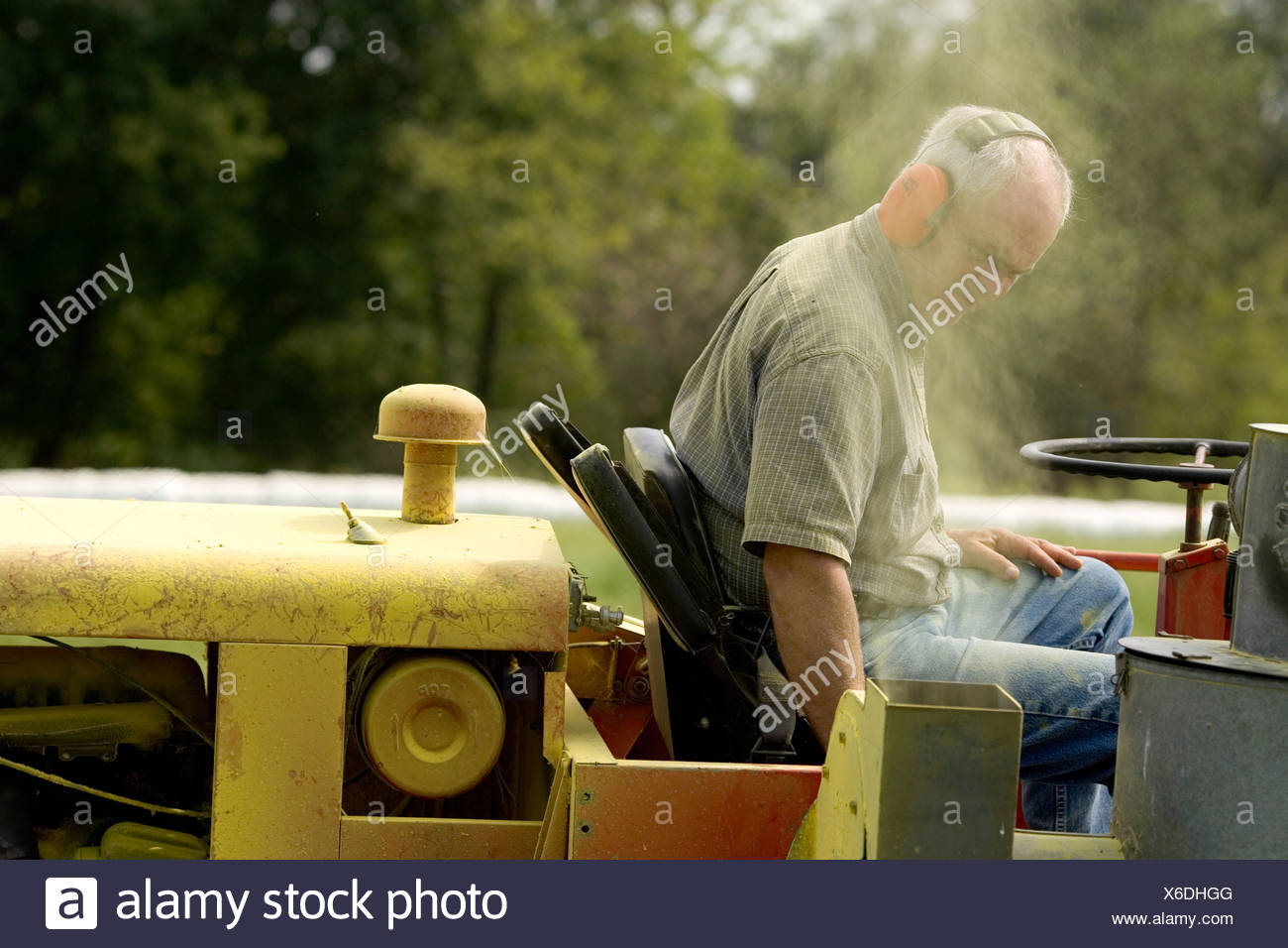 A man on a tractor harvests ragweed pollen at his fam in Sedalia Missouri. Stock Photo