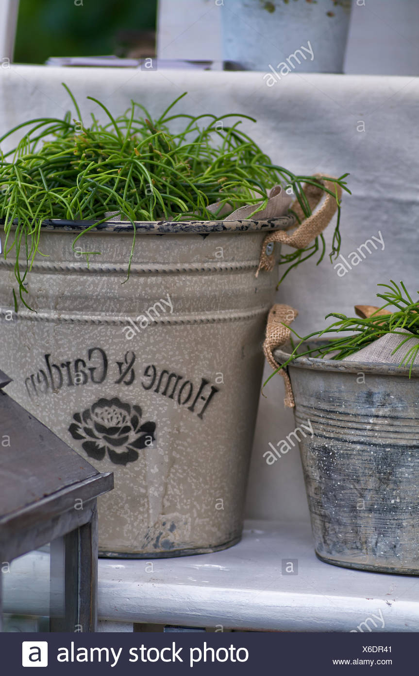 Country garden decoration - Stock Image