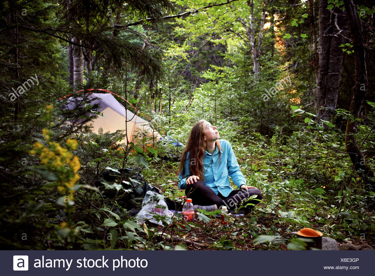 A hiker eating dinner pauses to watch birds in the trees above. - Stock Image
