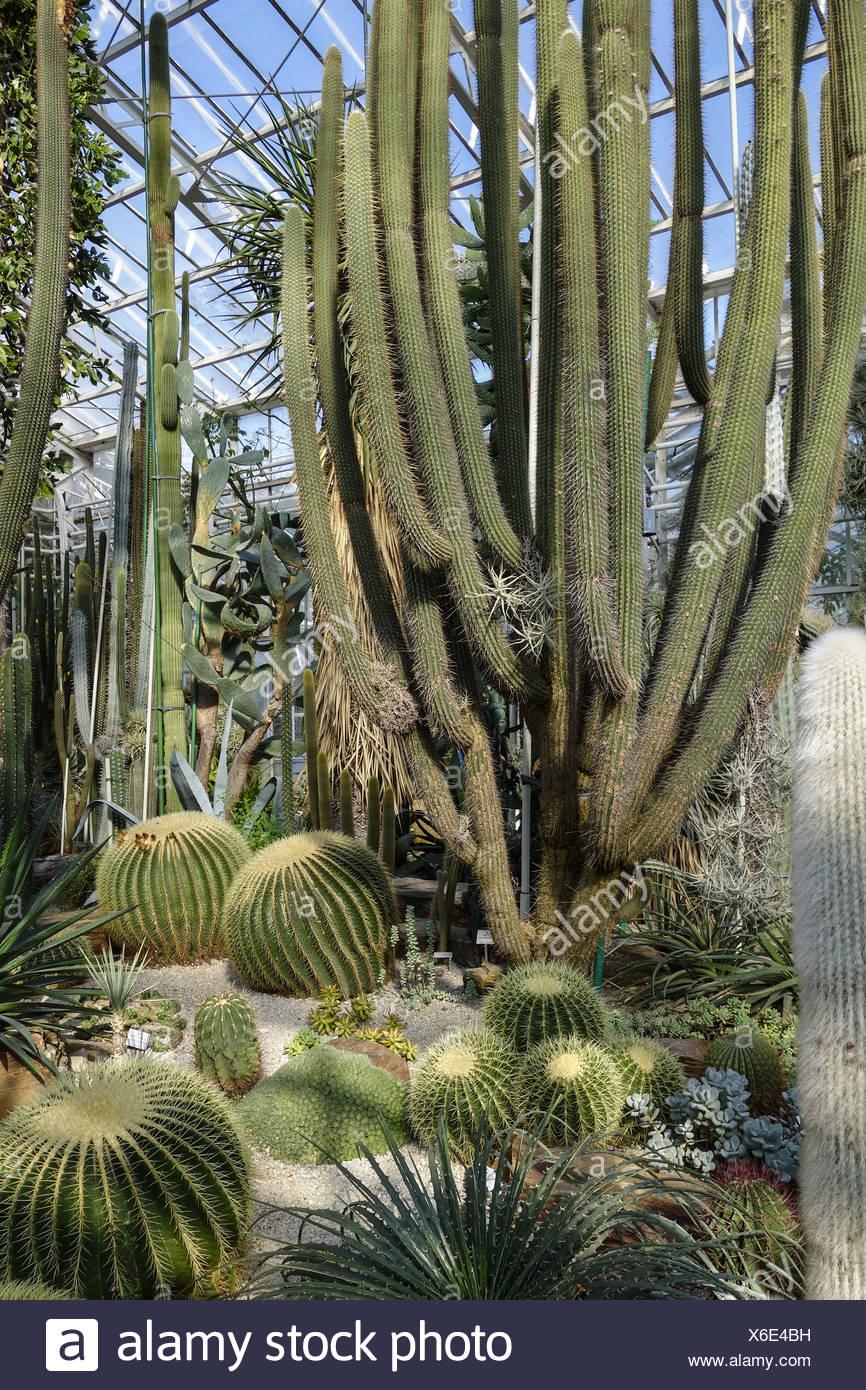 Botanischer Garten Germany Stock Photos & Botanischer