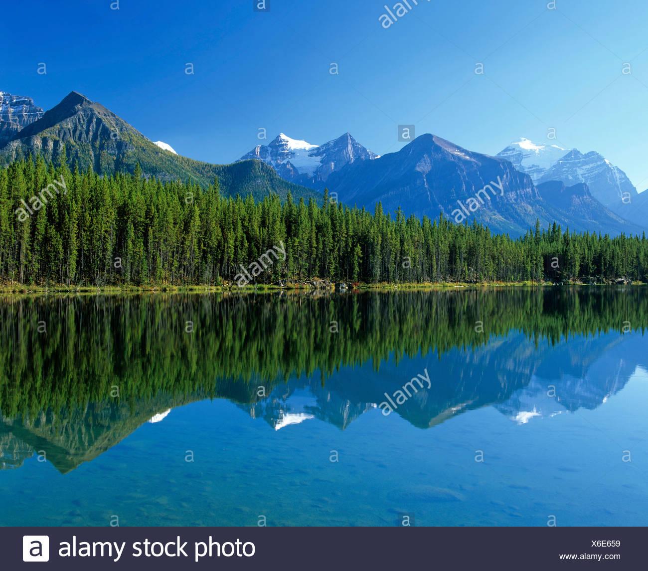 Jasper Tramway, gondola, cablecar, Alberta, Canada - Stock Image