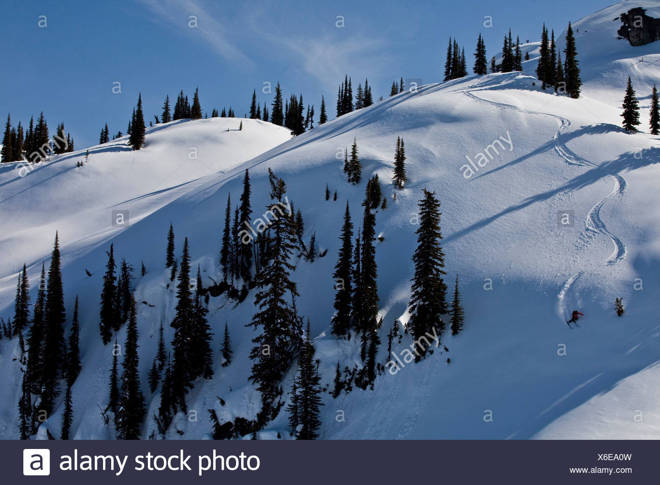 A male skier earns his turns and skis fresh powder while ski touring at, Sol Mountain Lodge, Monashees, British Columbia, Canada - Stock Image