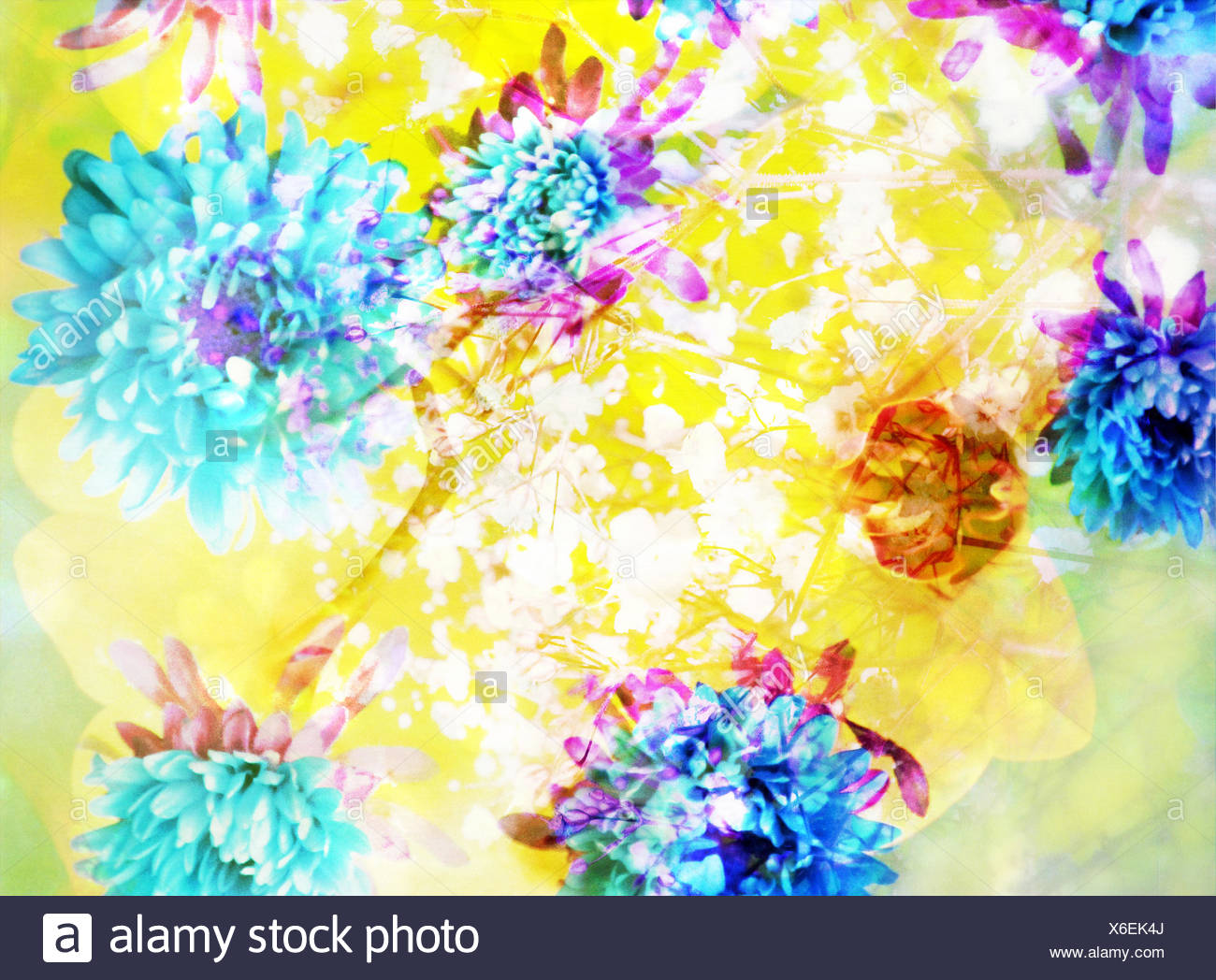 Composing with coloured blossoms and stems, - Stock Image
