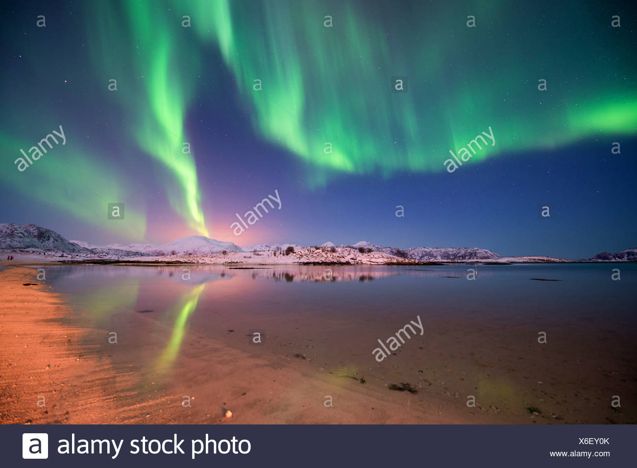 aurora borealis over island Kvaloeya, Norway, Troms - Stock Image