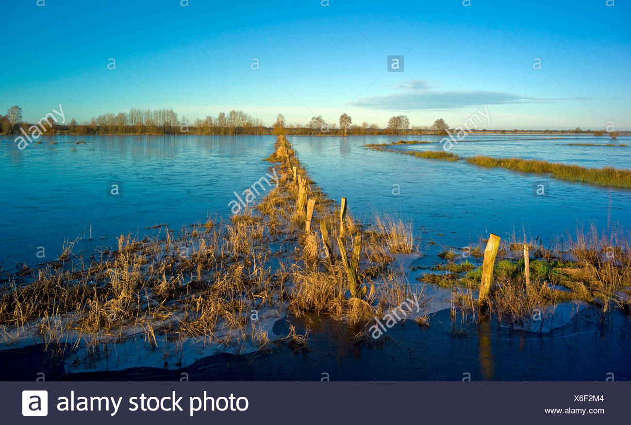 floated nature reserve Breites Wasser, Germany, Lower Saxony, Osterholz, Worpswede - Stock Image