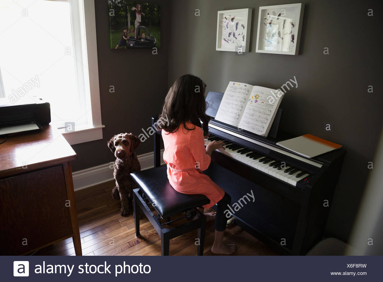 Dog waiting for girl playing piano - Stock Image
