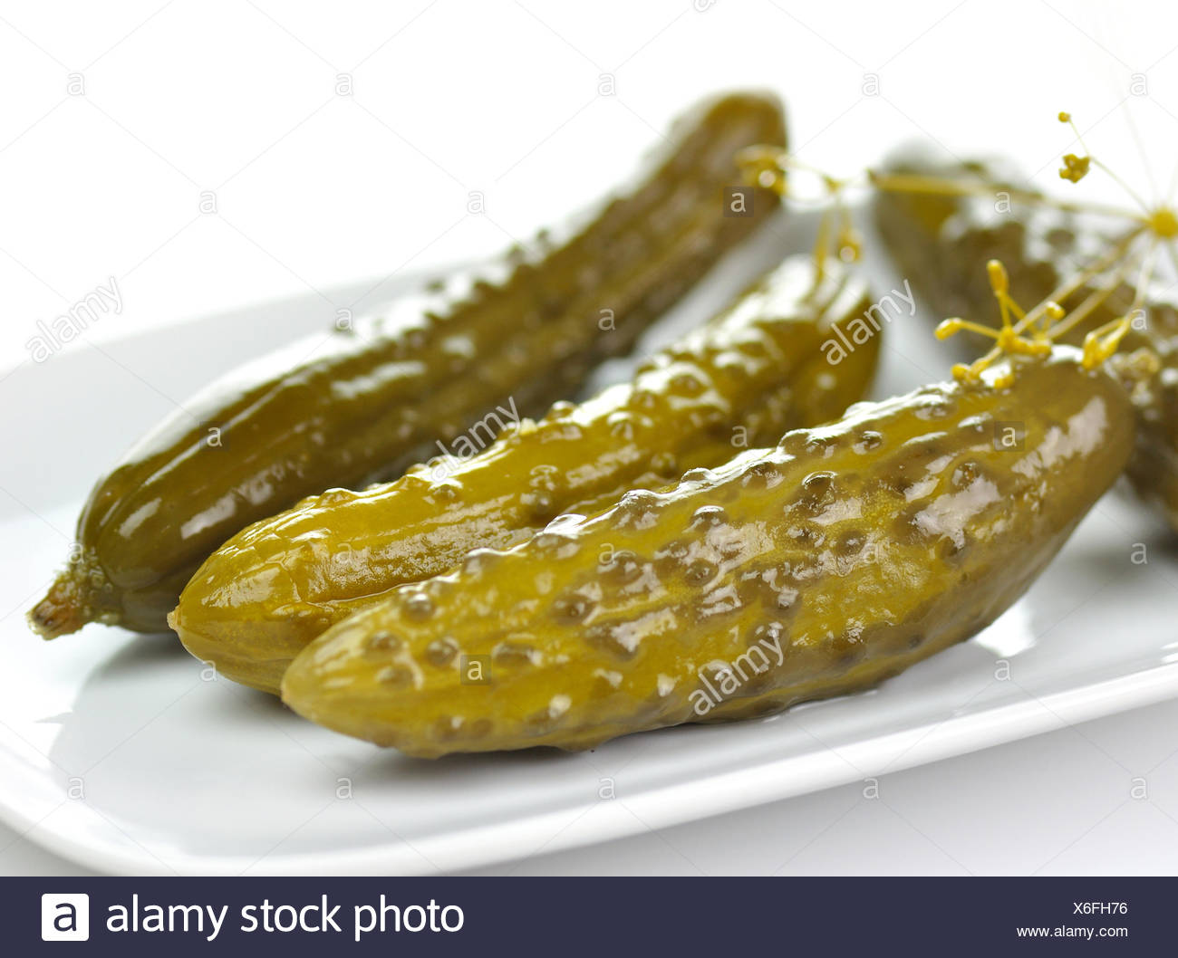 dill pickles on a white dish - Stock Image