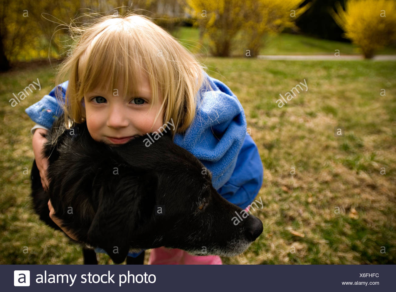 Young girl (2-4) hugs her dog on a spring day. - Stock Image