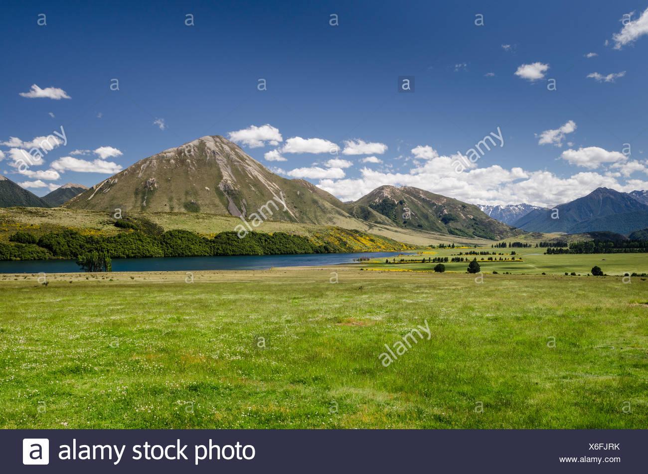 Mountains and meadows, Craigieburn Range, Porters Pass, Canterbury, South Island, New Zealand, Oceania - Stock Image