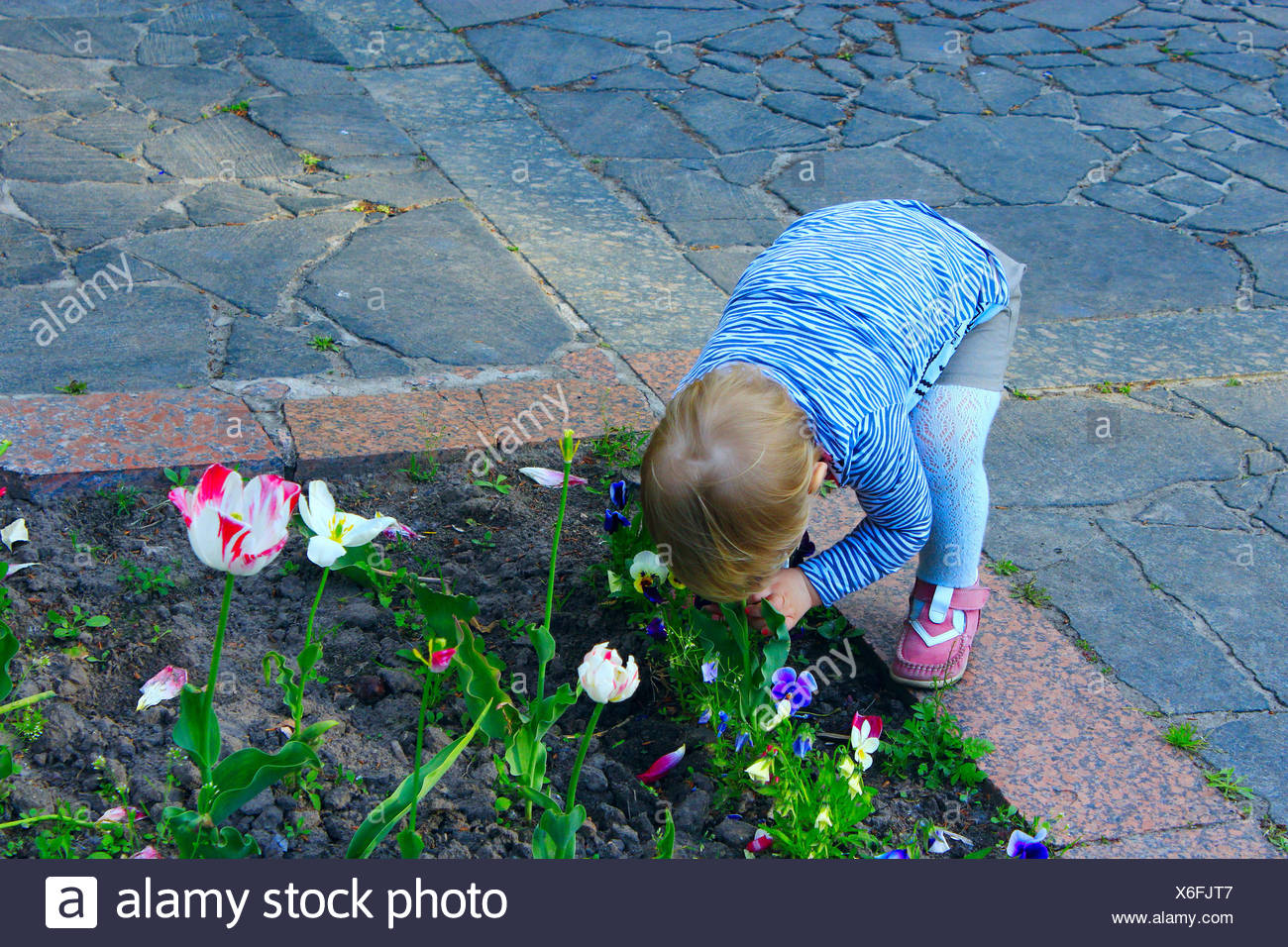 Curved Flower Bed Stock Photos & Curved Flower Bed Stock Images - Alamy
