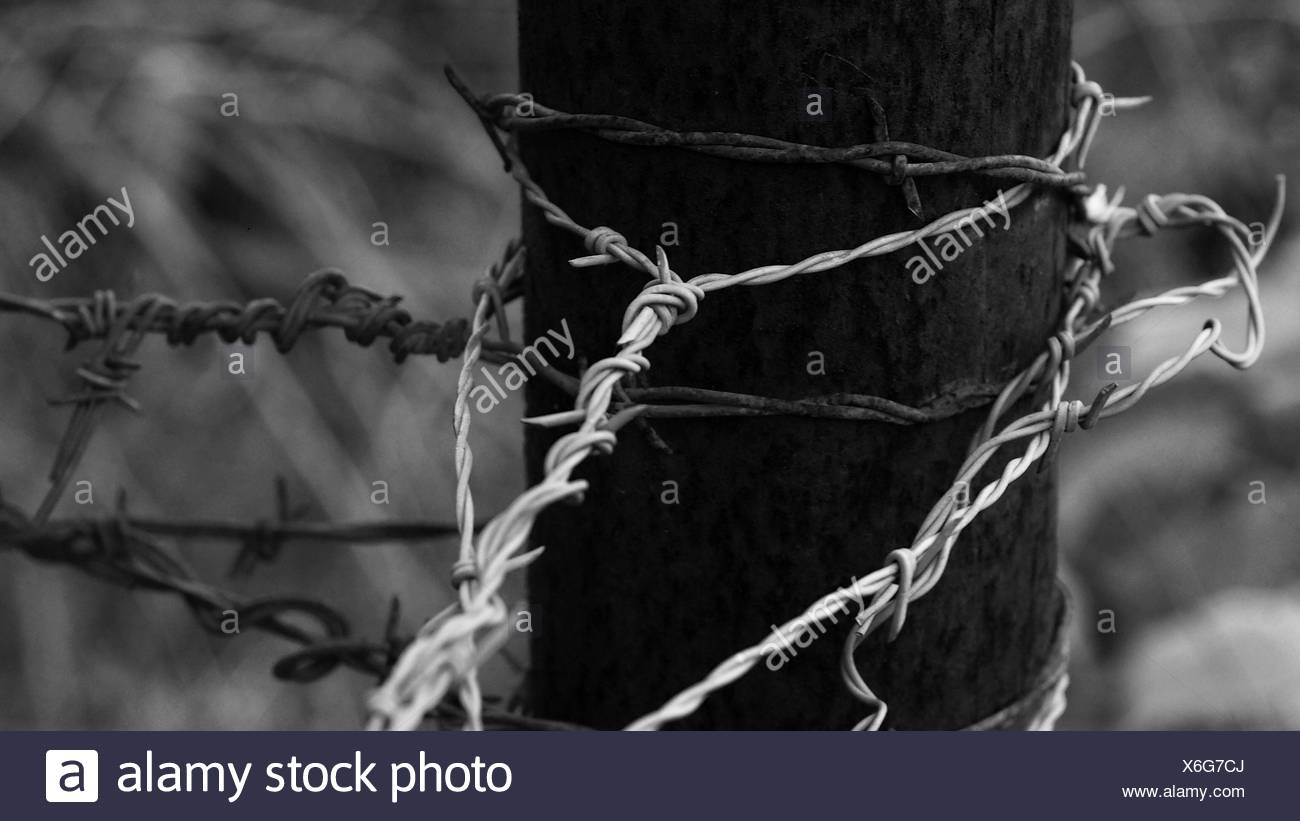 Close-Up Of Barb Wires Tied Up On Metal Pole - Stock Image