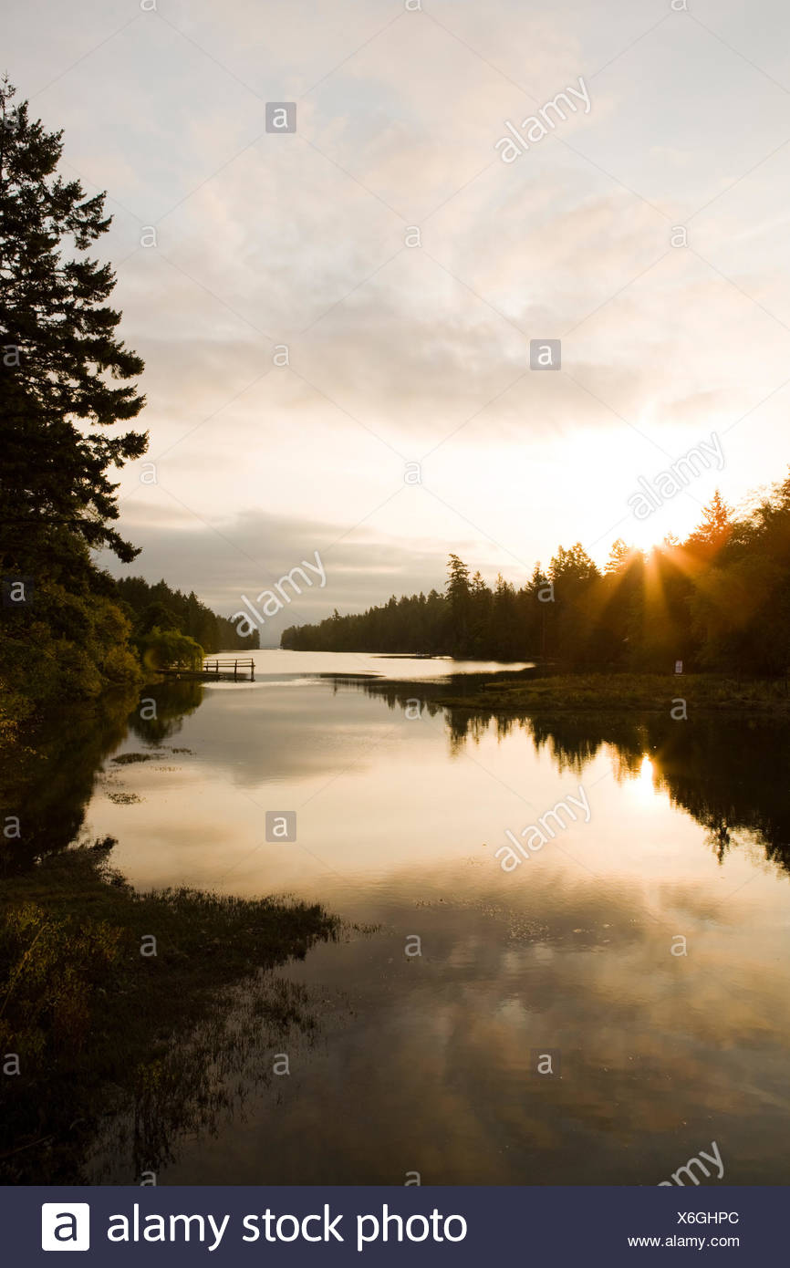 Canada, British Columbia, Salt Spring Island, Salt water marsh - Stock Image