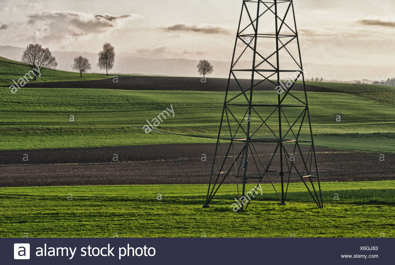 Field, electricity, energy policy, fields, power line, canton Bern, man-made, cultural, landscape, scenery, agriculture, mast, p - Stock Image