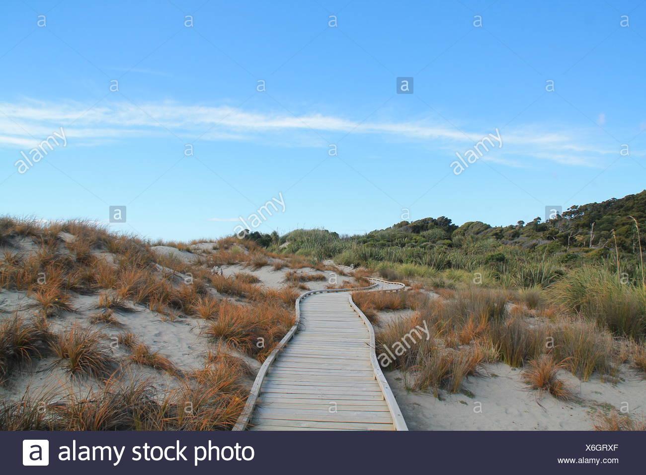 Beachpath, New Zealand - Stock Image
