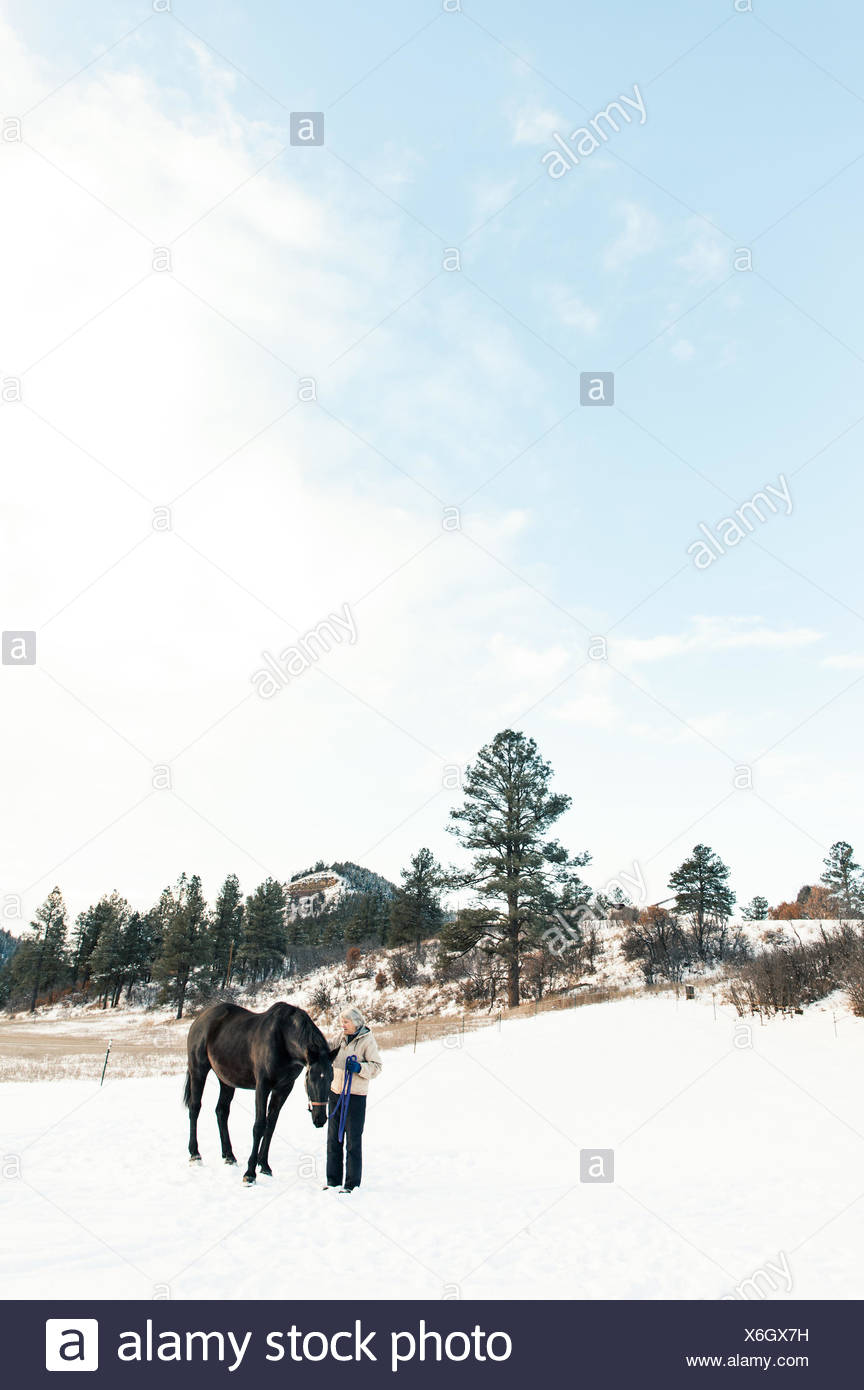 Senior adult woman standing with horse in snowy landscape - Stock Image