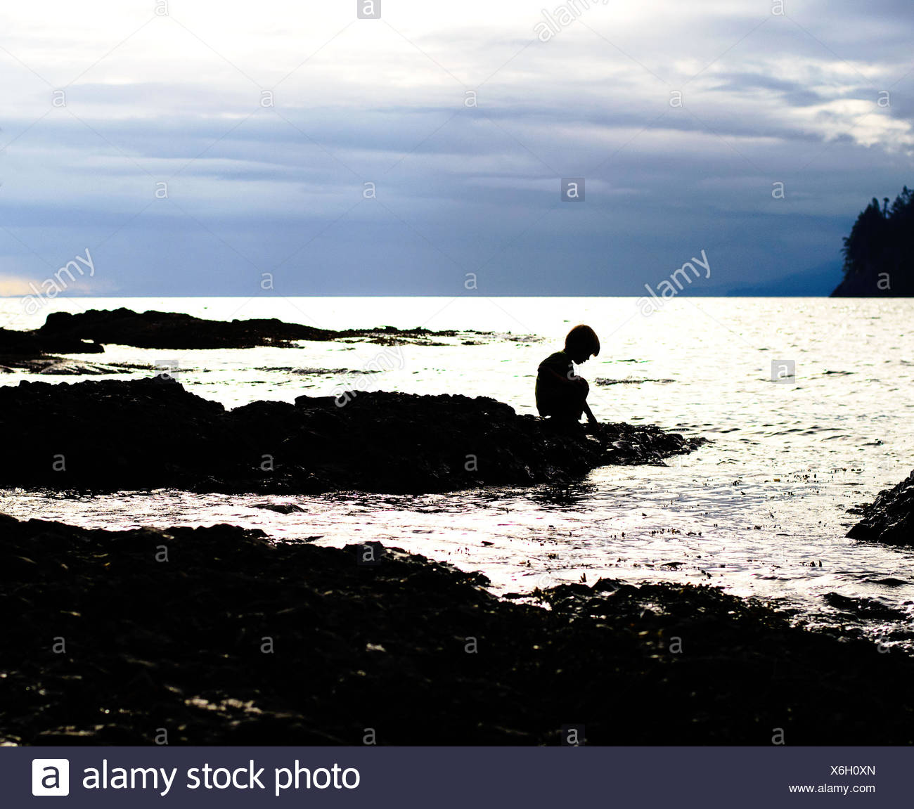 Silhouette of boy (4-5 years) at beach - Stock Image
