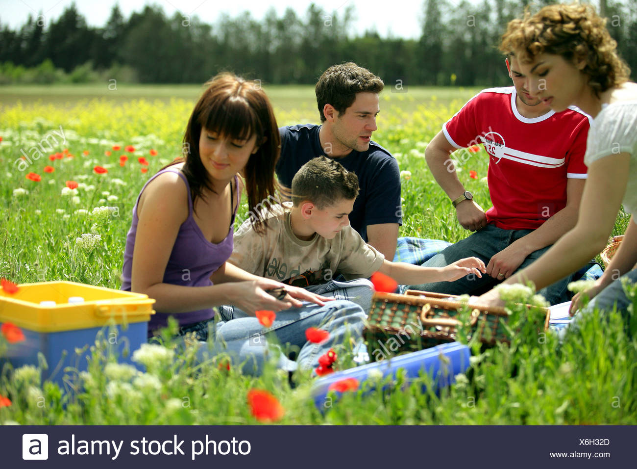Group of friends having a picnic in a poppies yard - Stock Image