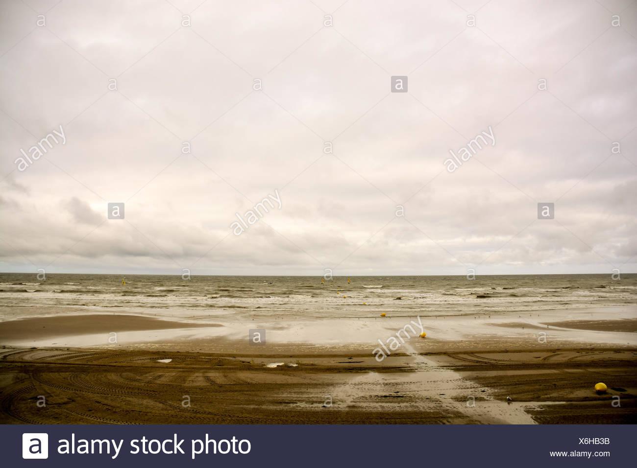 Ocean Coast's View - Stock Image