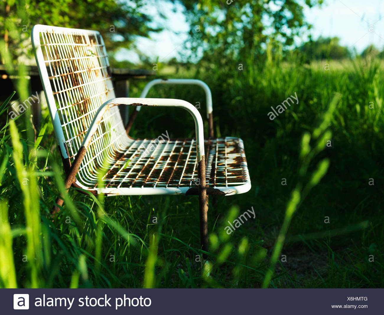 Empty park bench in grass - Stock Image