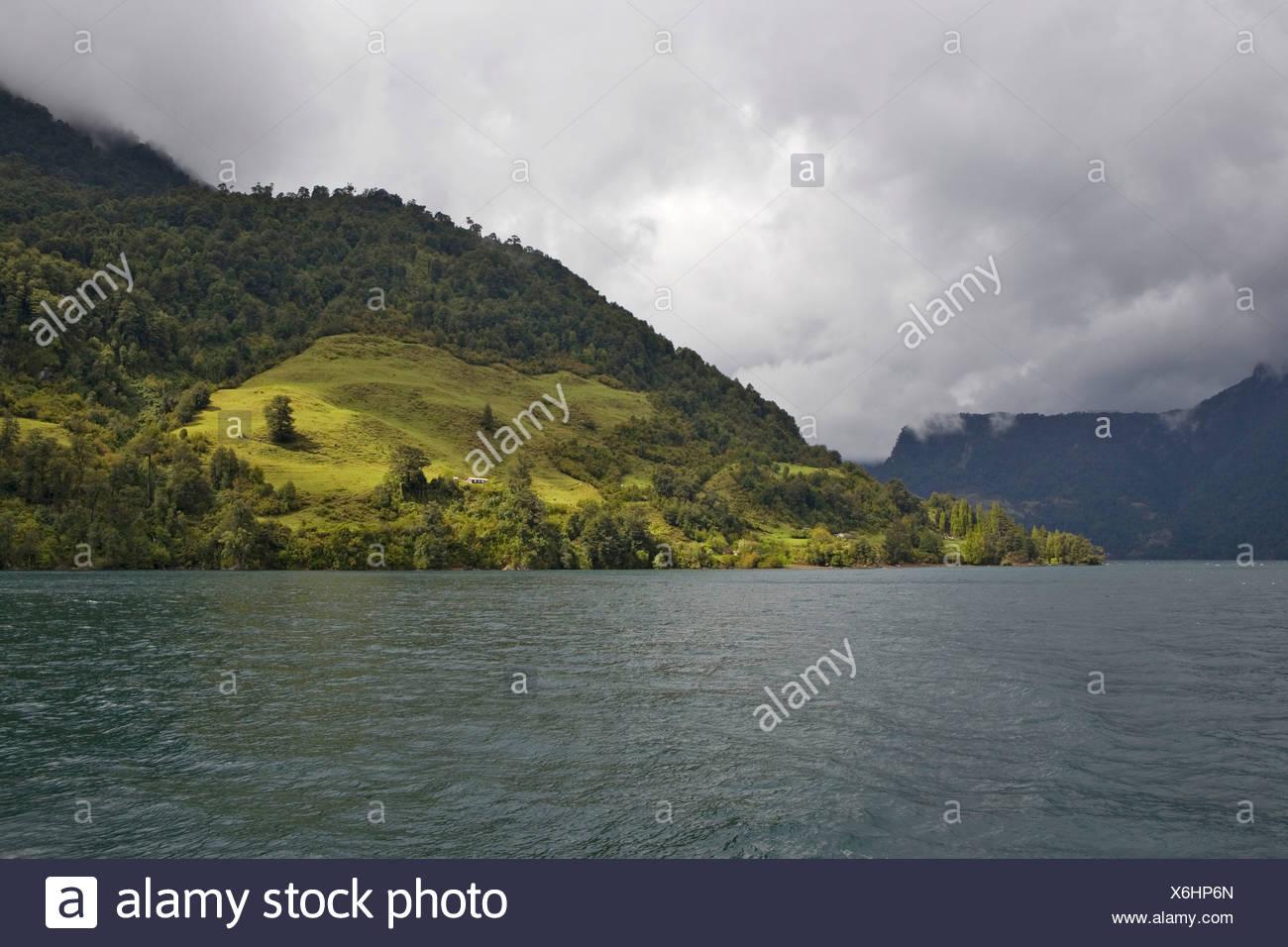 Sparsely populated shore of Lago Todo los Santos, Vicente Pérez Rosales National Park, Region de los Lagos, Chile, South America - Stock Image