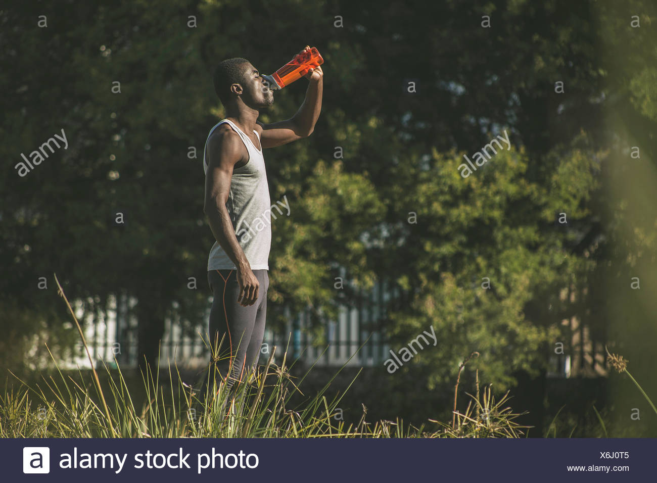 Side view man in field drinking from plastic bottle - Stock Image