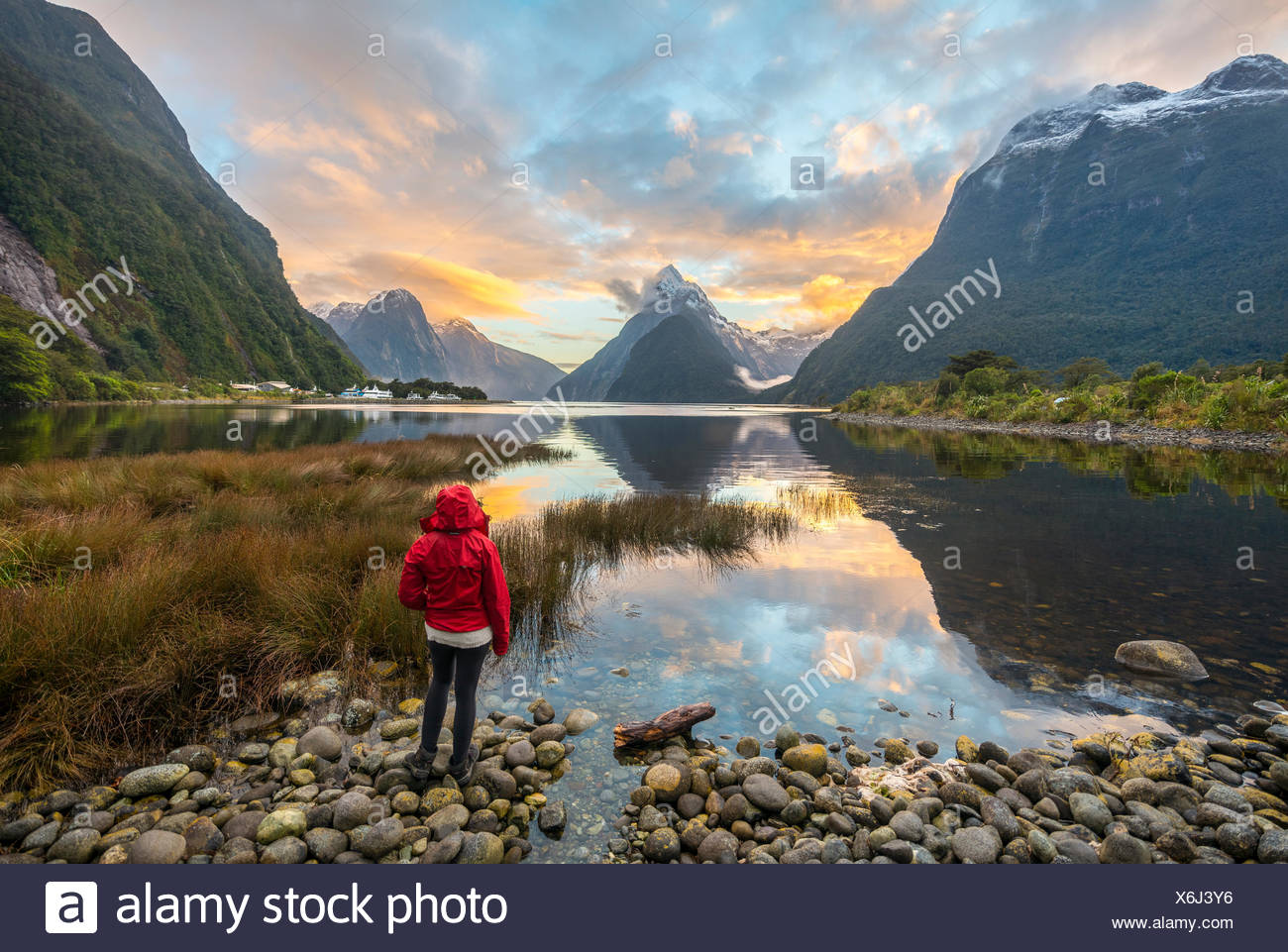 Tourist looking at the landscape, Miter Peak reflected in the water, sunset, Milford Sound, Fiordland National Park, Te Anau Stock Photo