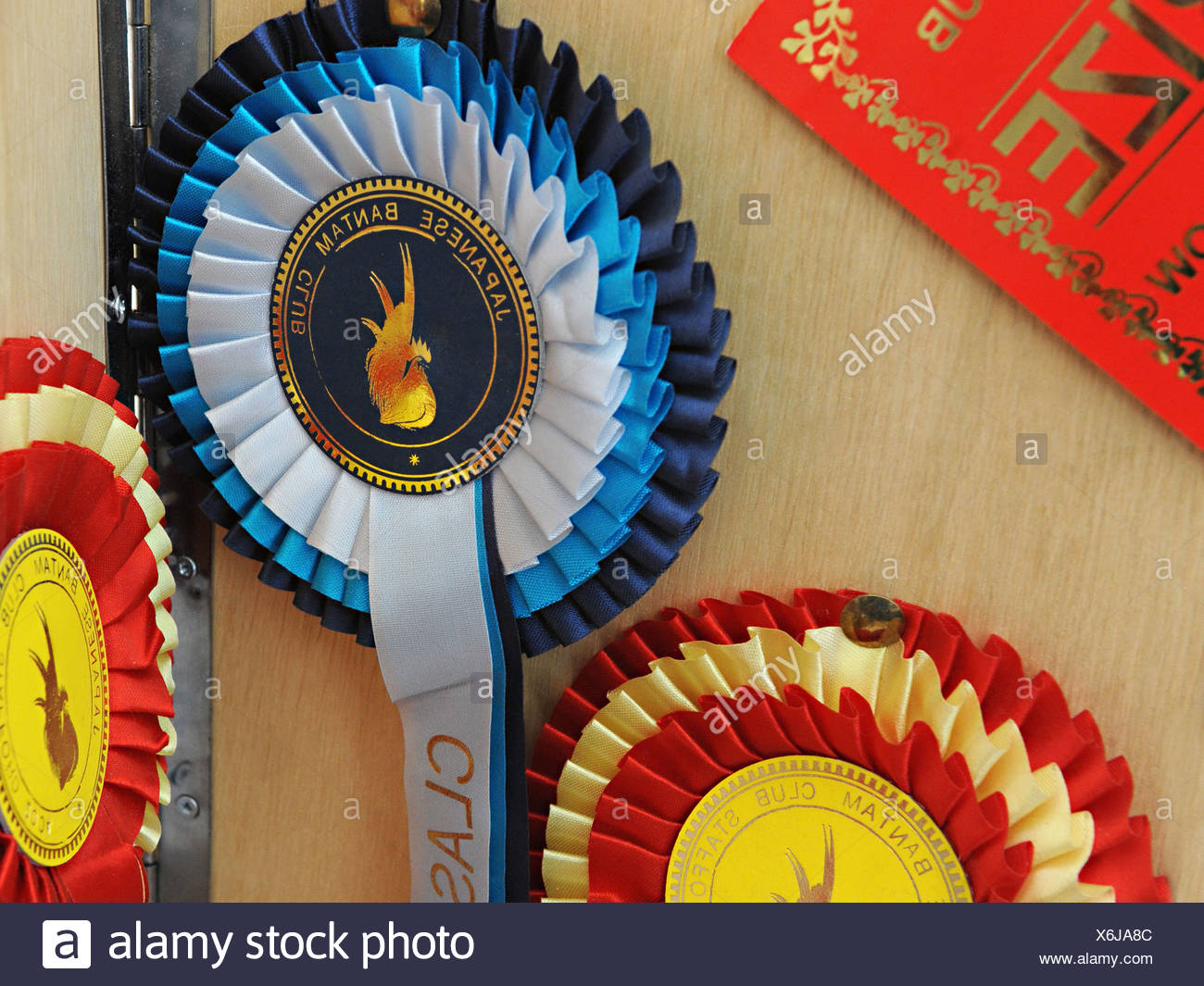 A rosette for award winning poultry from the Japanese bantam club - Stock Image
