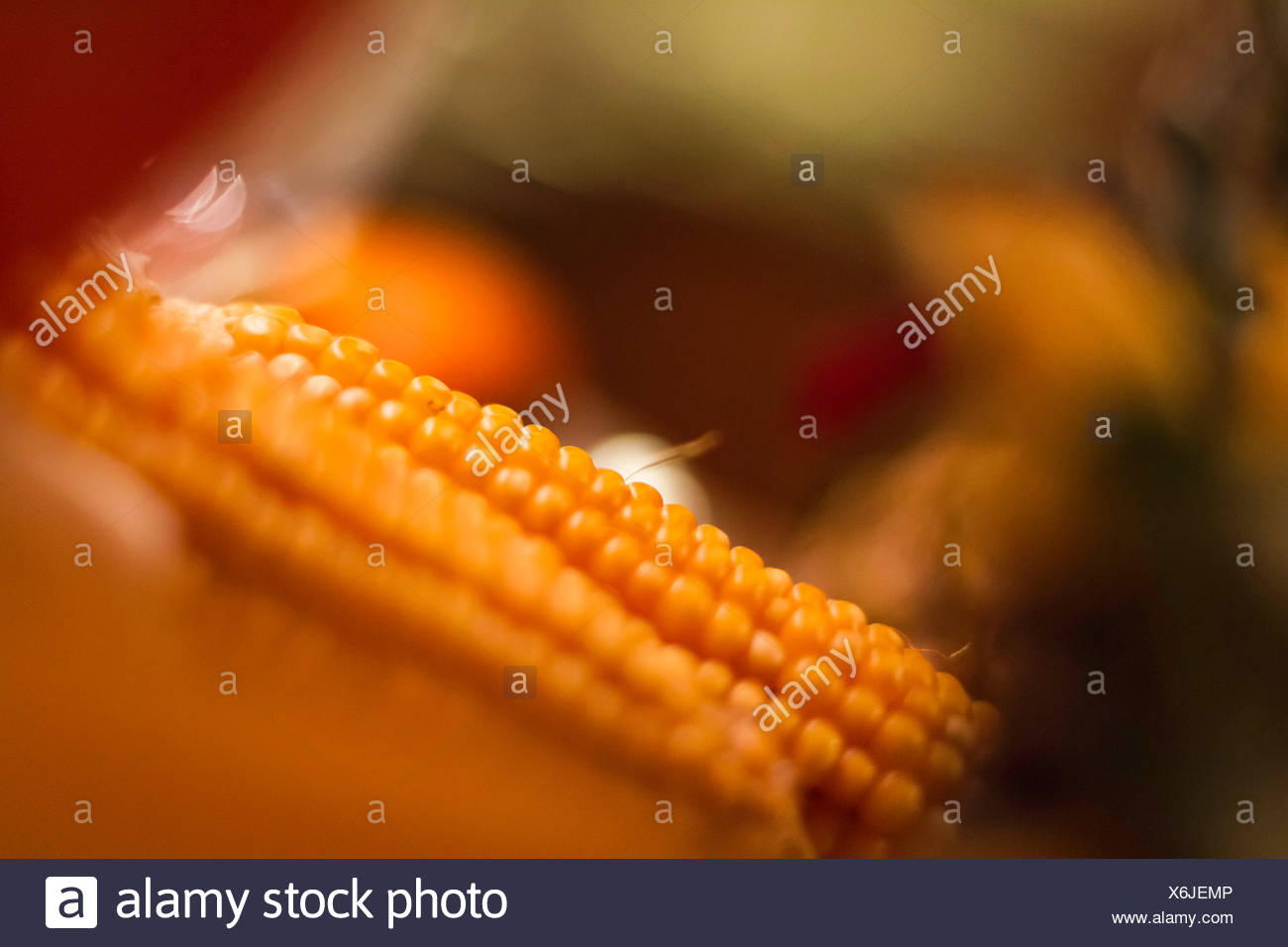 Close up of ears of corn - Stock Image