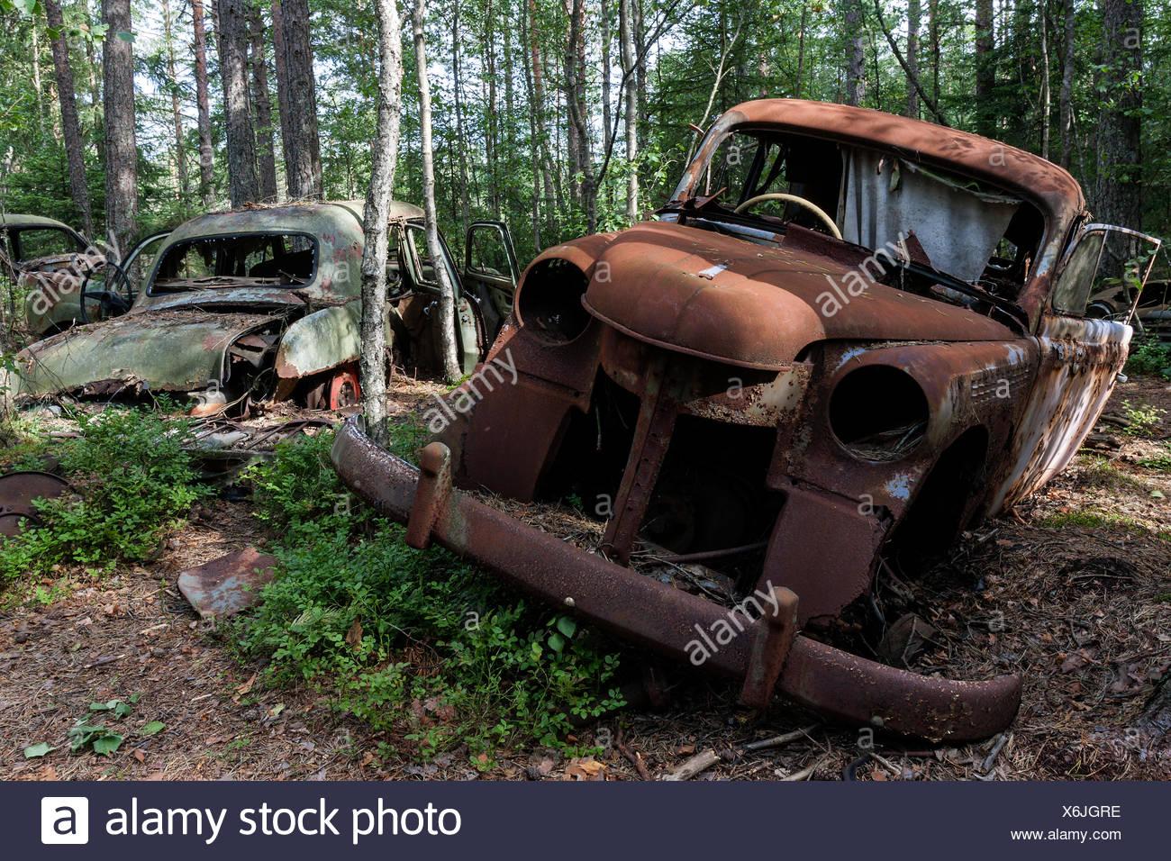 Junkyard in the forest, junk cars, 40s in Ryd, Småland, Sweden Stock ...