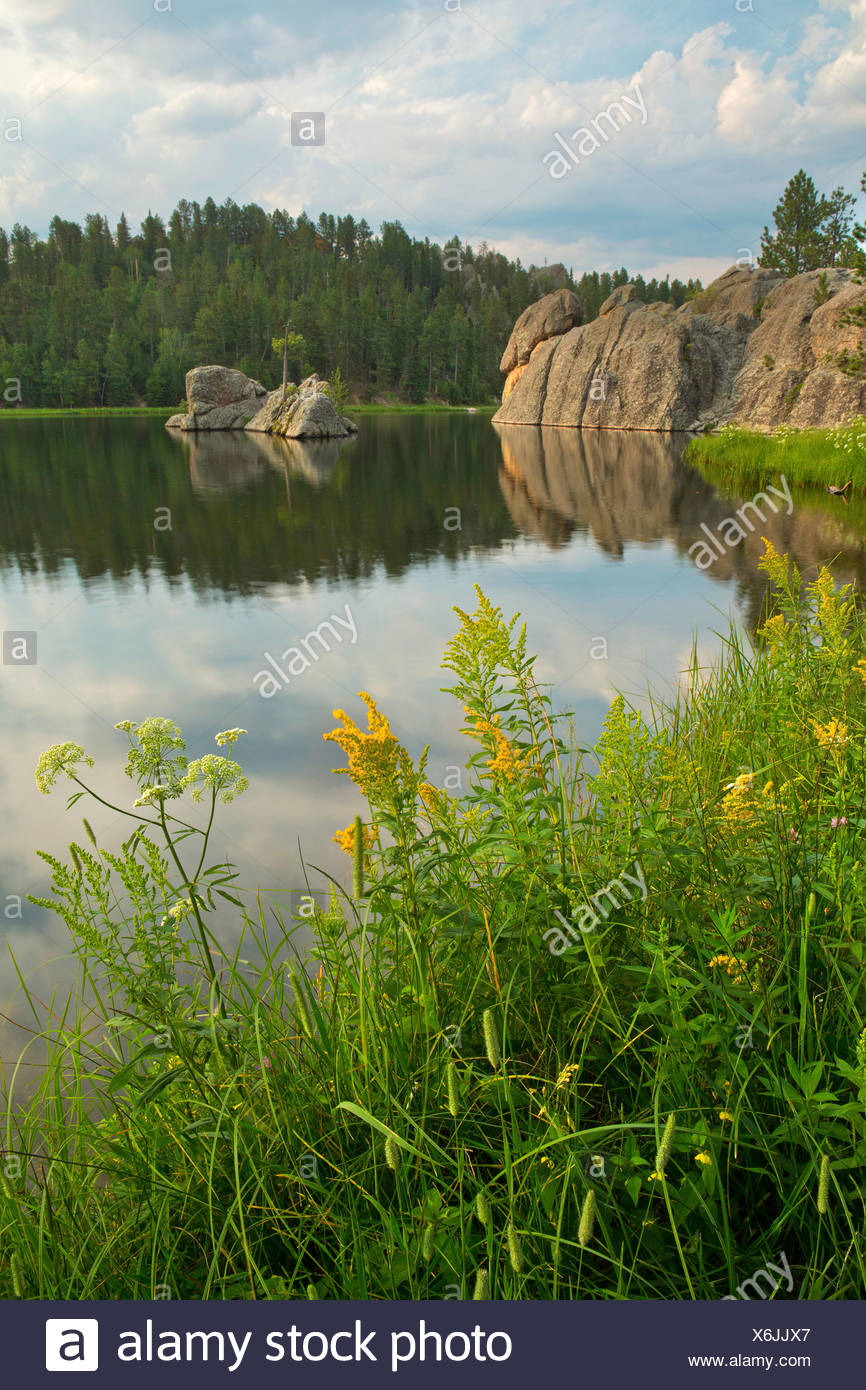 USA, United States, America, Sylvan Lake, cliffs, water, Black Hills, lake, sunset, steep, forest, morning, still, serene, rocky - Stock Image