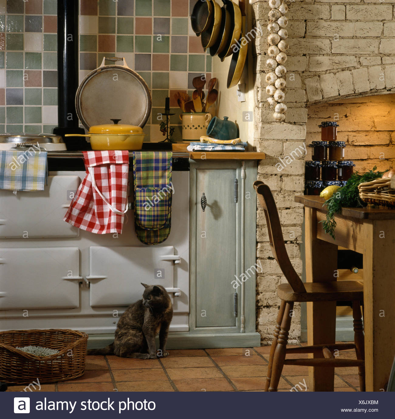 Cat sitting beside white Aga oven with a red checked apron in a country kitchen - Stock Image