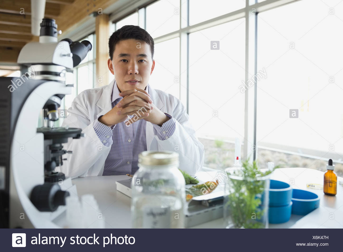 Portrait of botanist sitting in laboratory - Stock Image
