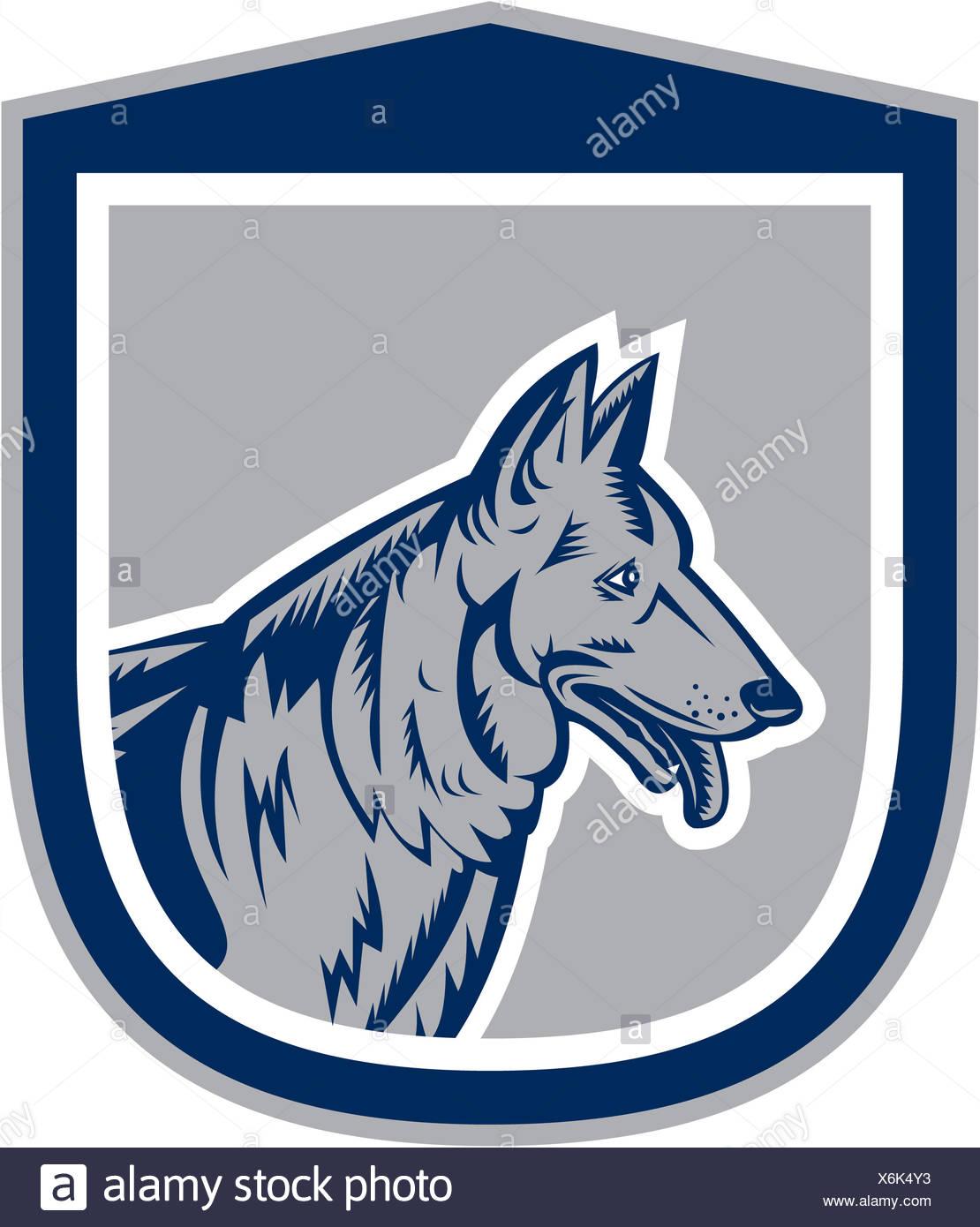 German Shepherd Dog Head Shield Woodcut - Stock Image