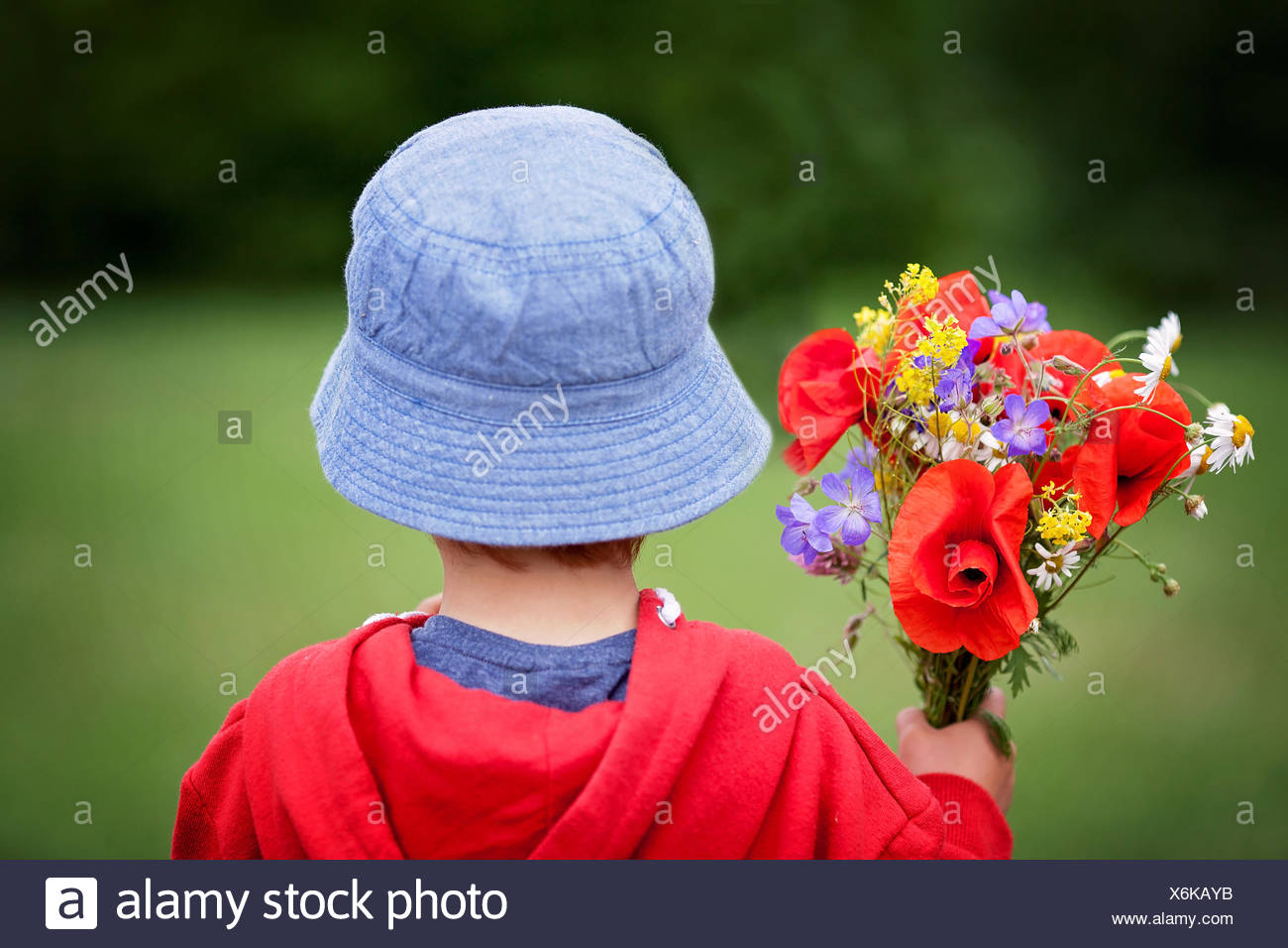 Rear view of a boy holding a bouquet of multi-colored flowers - Stock Image