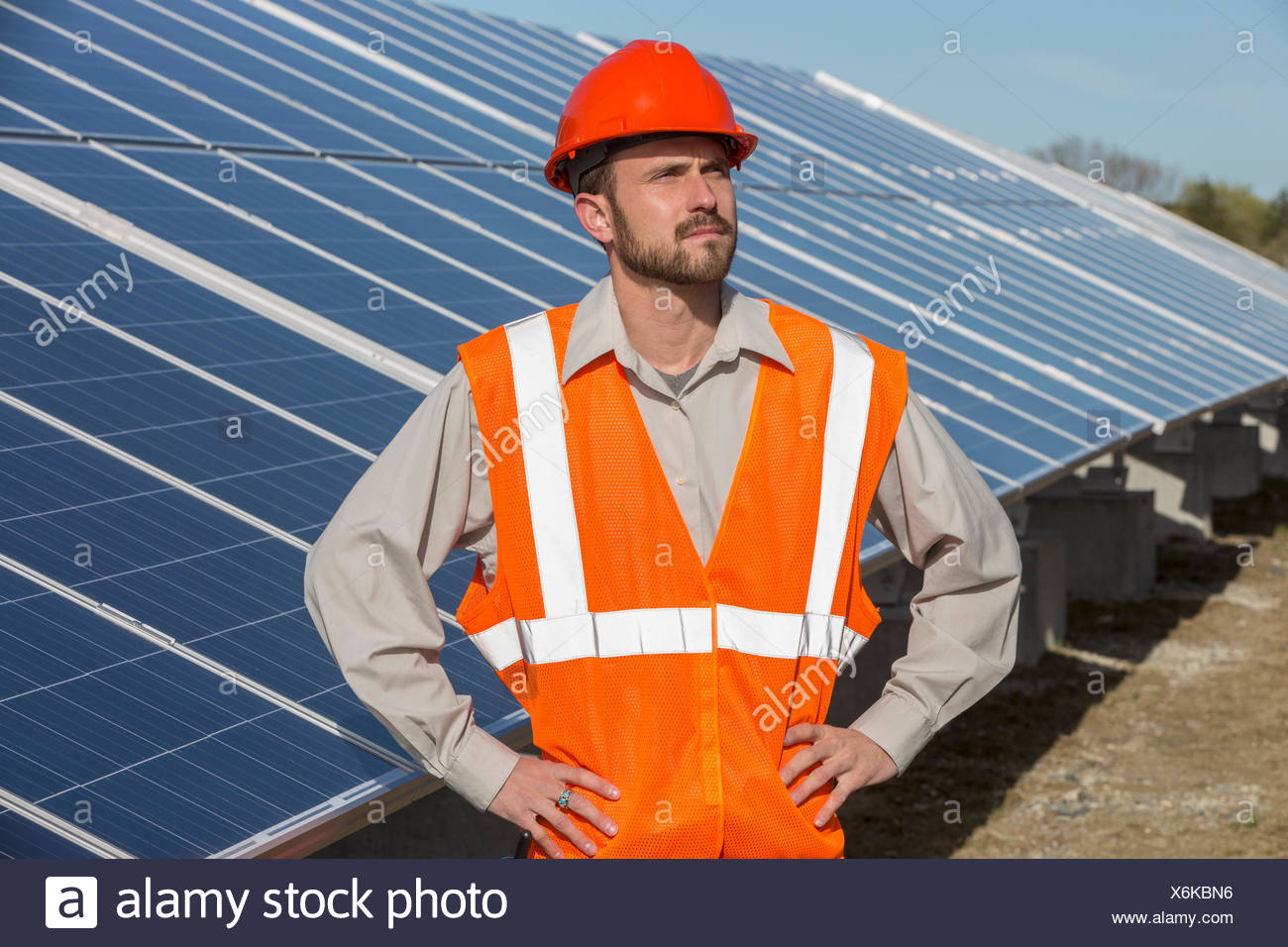 Power engineer standing at solar photovoltaic array - Stock Image