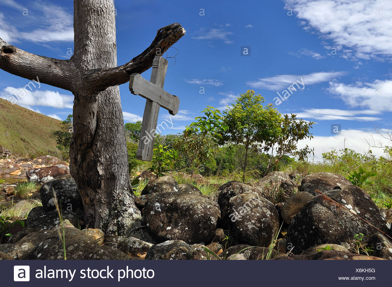 Wooden cross on a tree in the wilderness, trek to the Roraima table mountain, highest mountain of Brazil - Stock Image