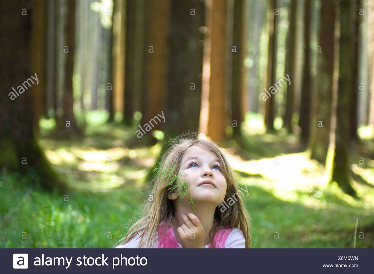 portrait of young girl standing in forest - Stock Image