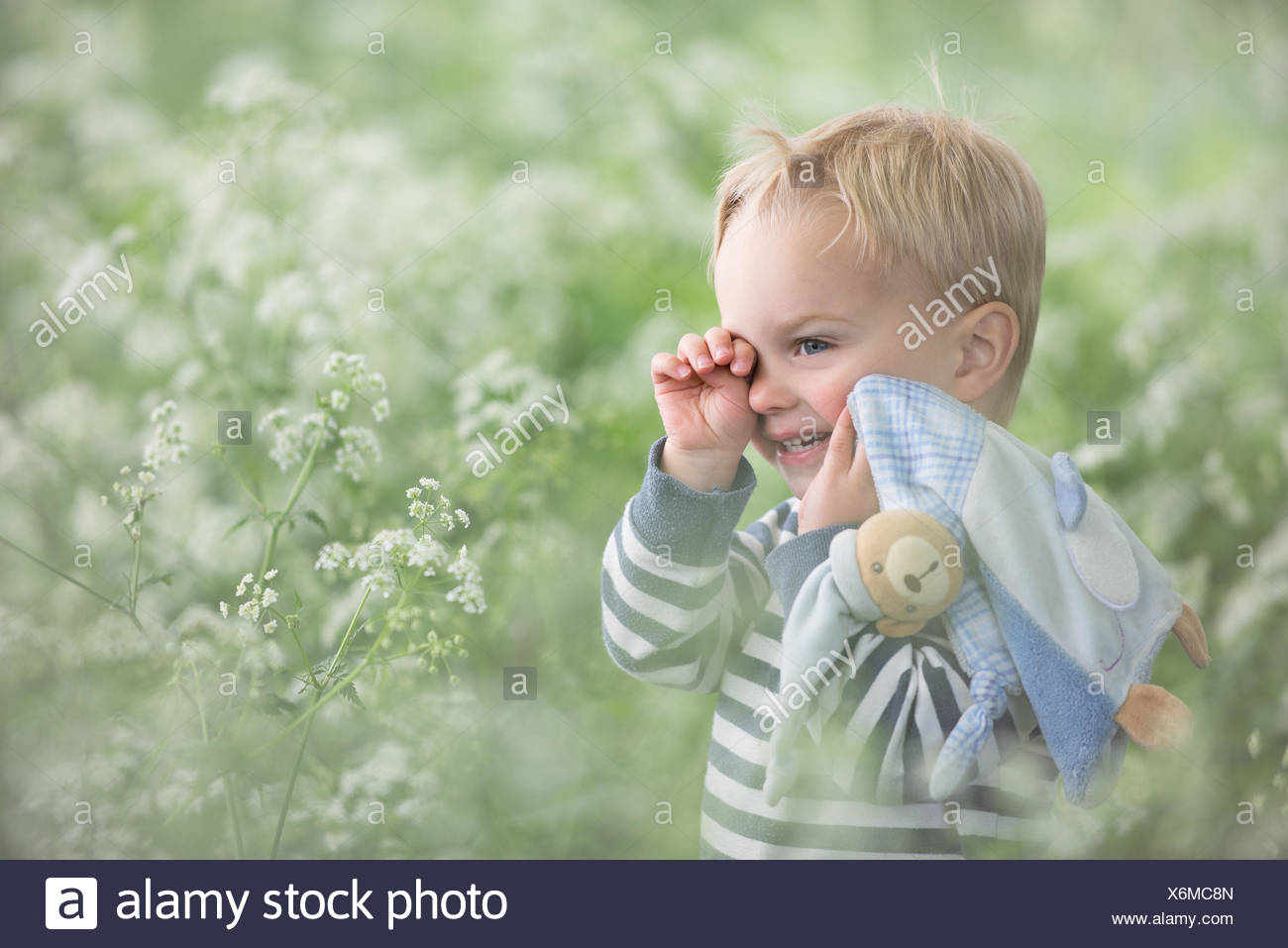 Tired toddler standing in a field rubbing his eyes - Stock Image