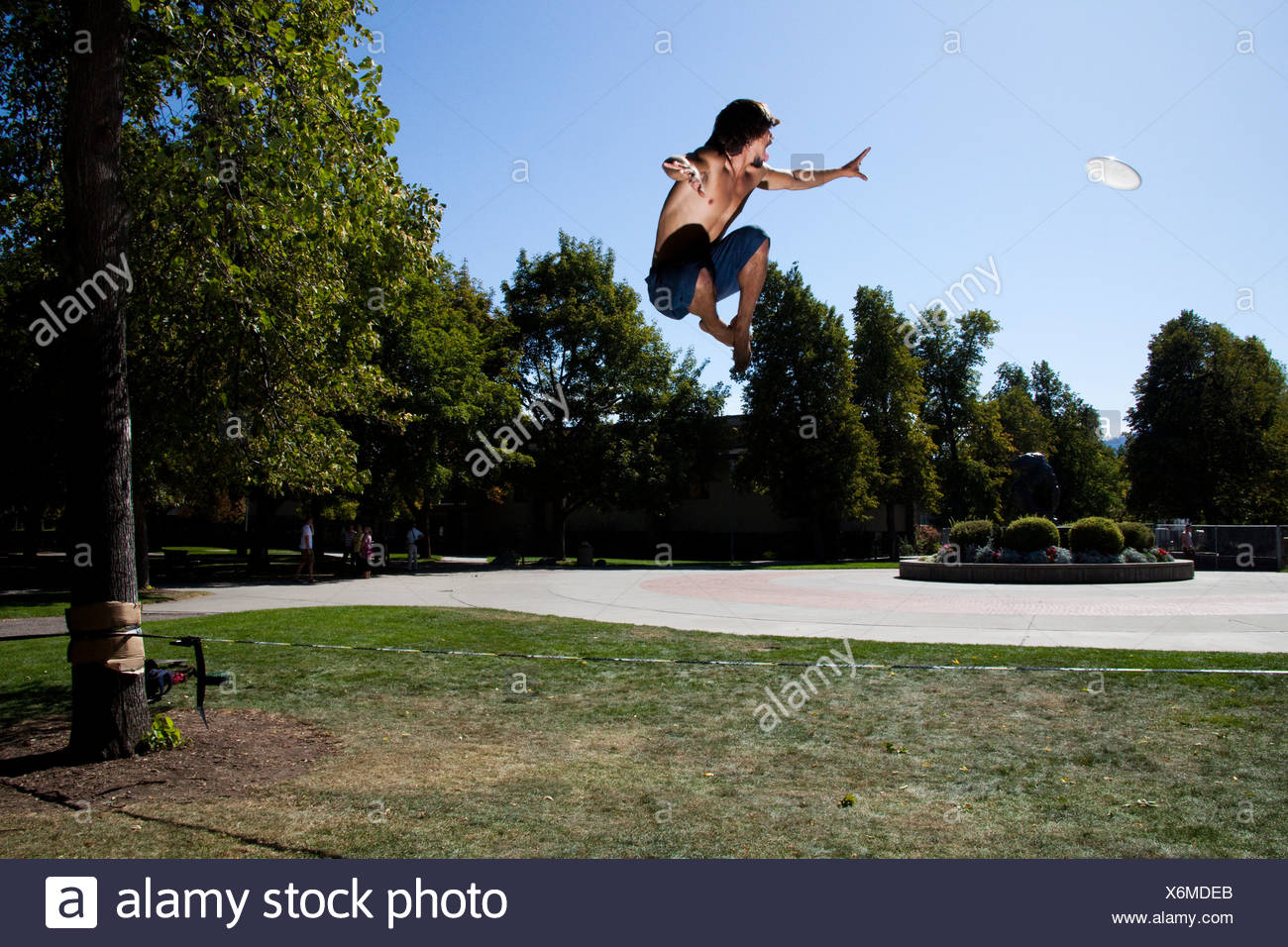 A professional slackliner plays around and catches a flying disk on the slackline on a university campus in Missoula, Montana. - Stock Image