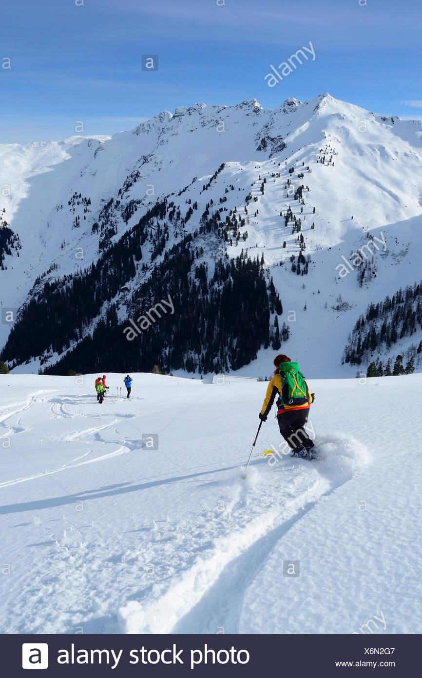 Female backcountry skier downhill skiing, Kleiner Galtenberg, Kitzbuehel Alps, Tyrol, Austria - Stock Image