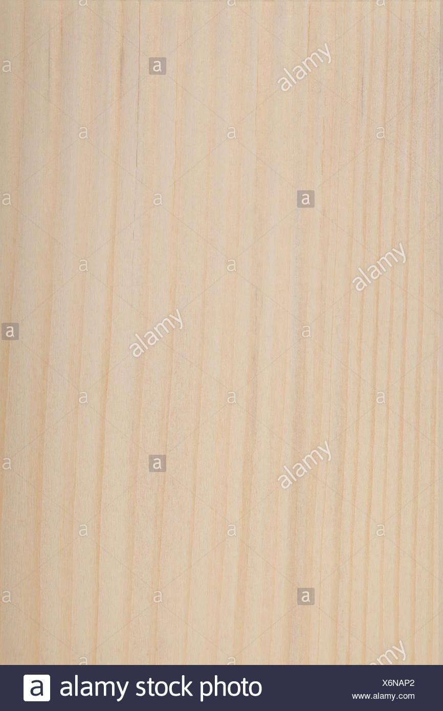 wood fir conifer - Stock Image