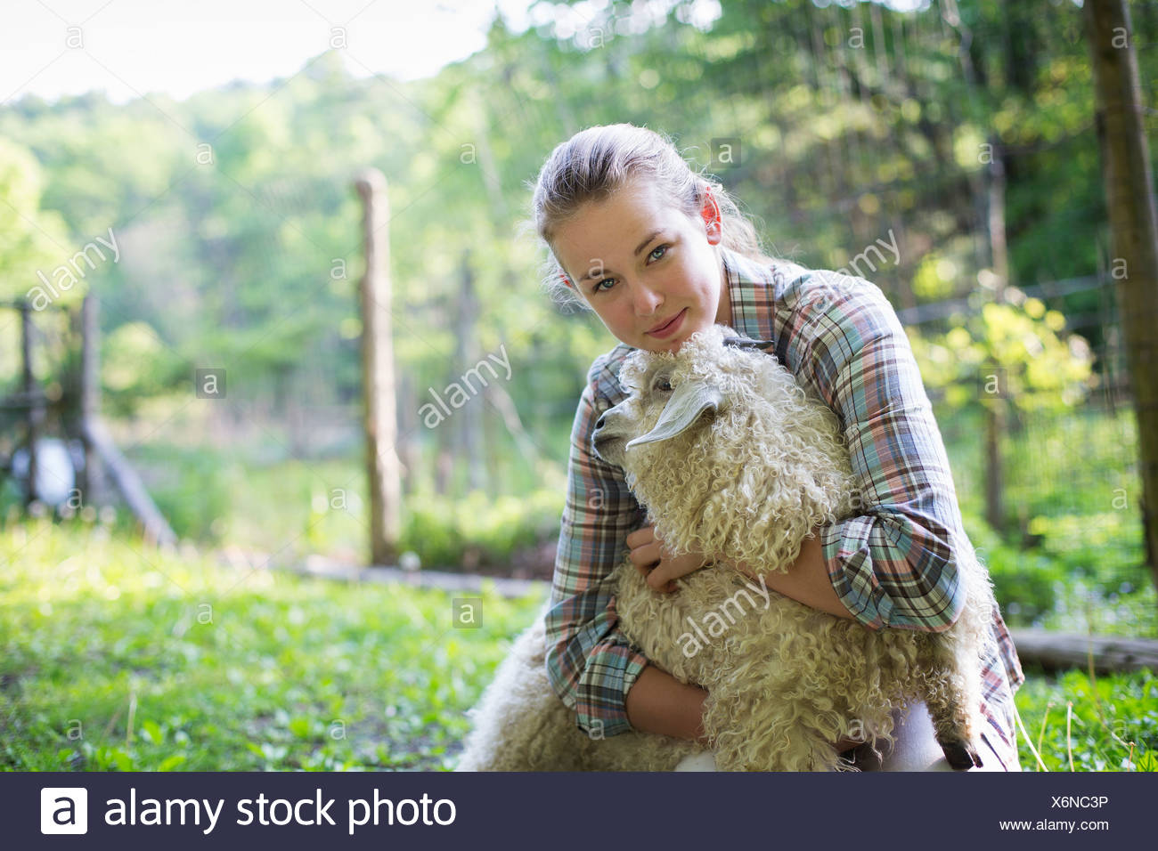 A teenager kneeling and putting her arms around a very curly haired angora goat. - Stock Image