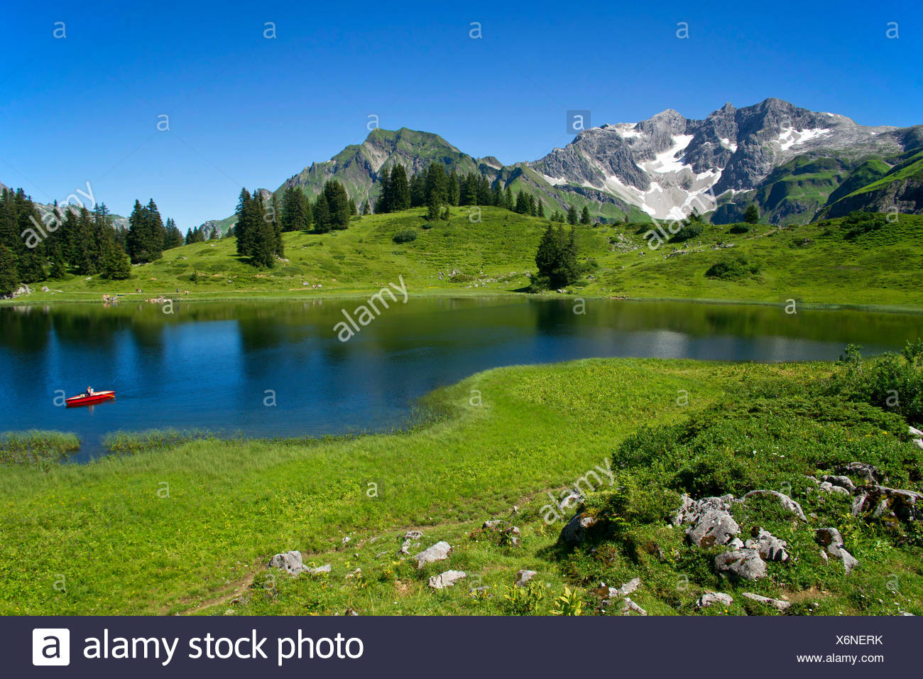 Koerber Lake in summer with cloudless sky, Austria, Vorarlberg, Hochtannbergspass - Stock Image
