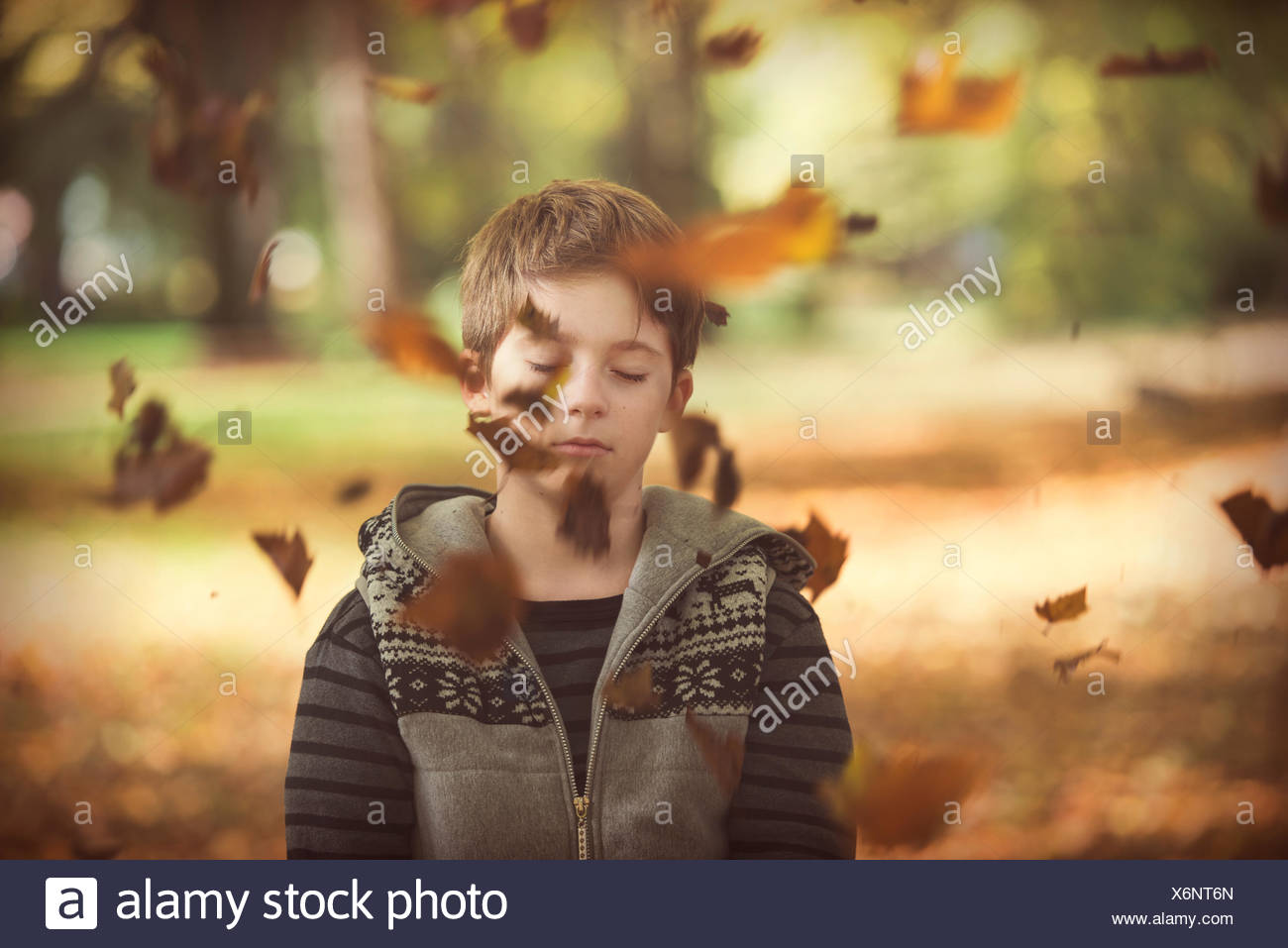 Boy standing in park with autumn leaves falling, Bulgaria - Stock Image