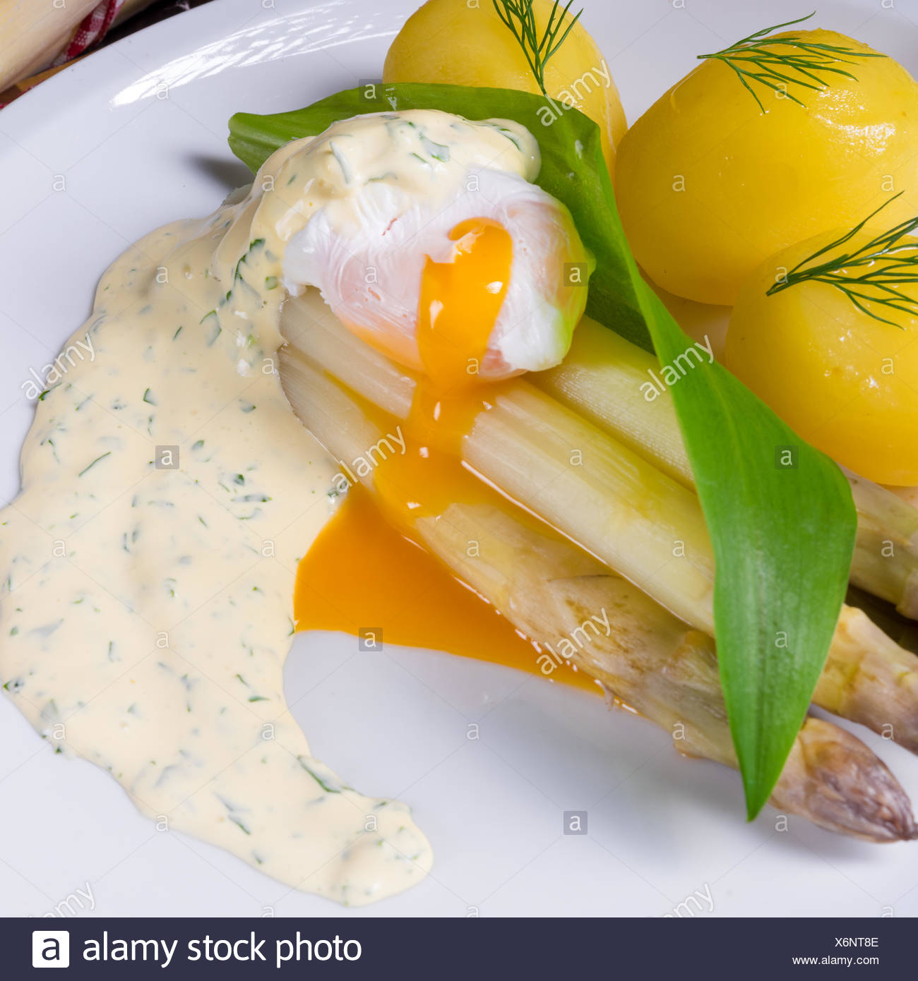 asparagus with wild garlic and poshed egg Stock Photo