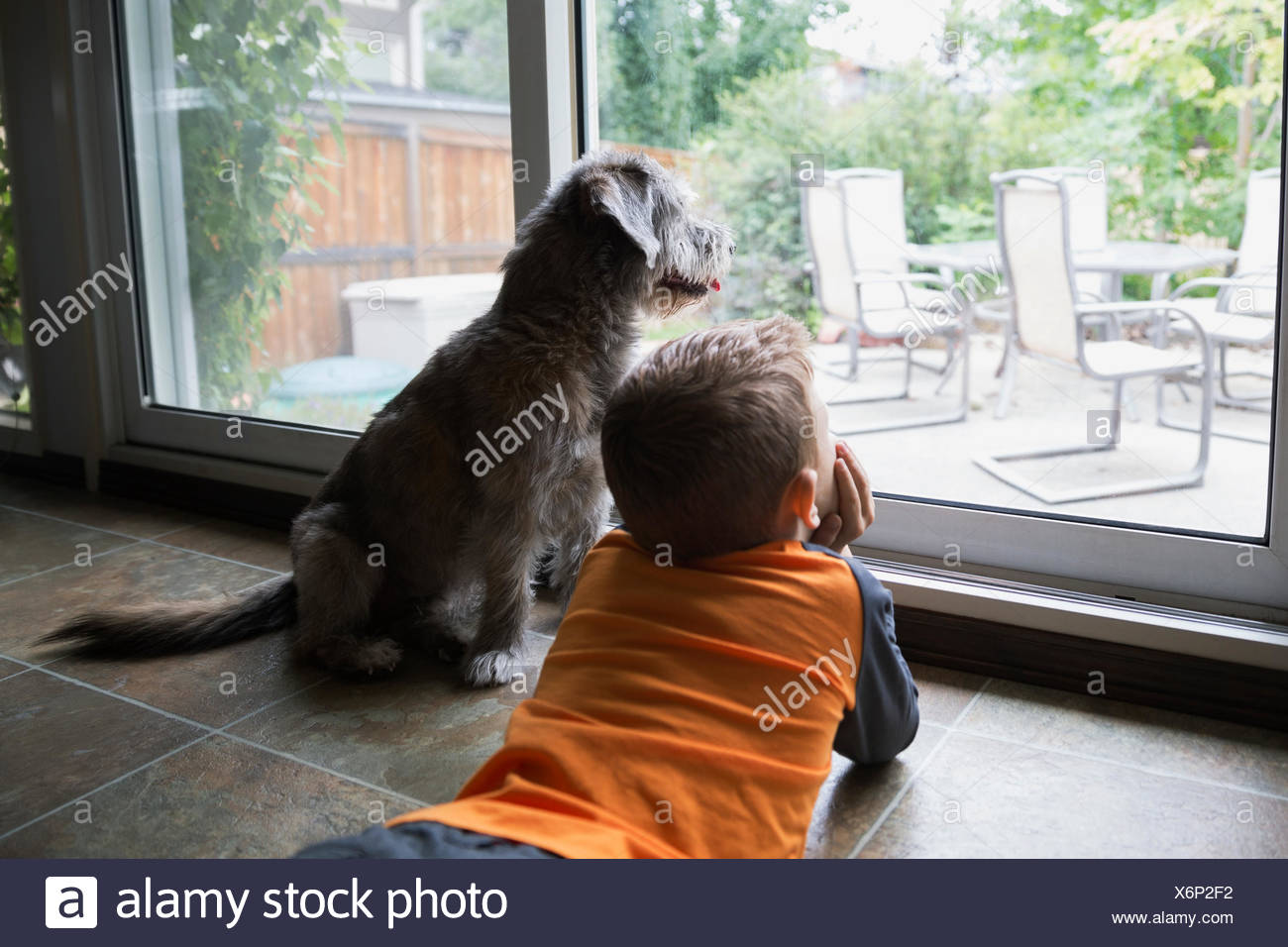 Curious boy laying at patio window with dog - Stock Image